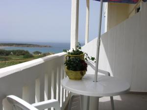 Alexis Hotel in Chania