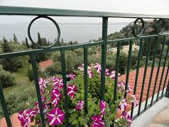 Corfu, Taverna Vitamins in Nissaki