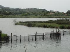 Corfu, Antinioti lagoon