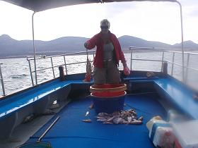 Antiparos fishing trip, Antiparos vistrip