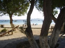 Paros, strand in Alyki