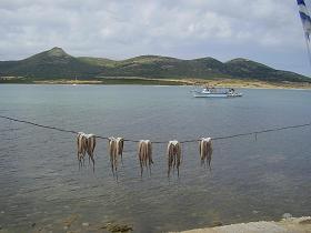 Captain Pipinos  Restaurant in Agios Georgios, Antiparos