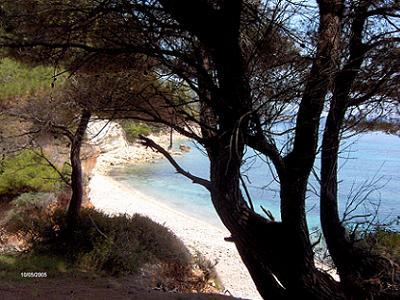 Milia beach Alonissos