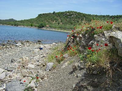 Achladeri Pyrra Lesbos