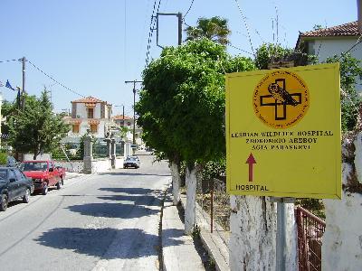 Agias Paraskevi Lesbos