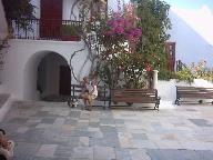 Dranka en een poesje op het plein in het klooster