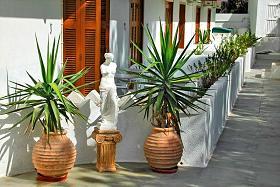 Milos, Aphrodite Hotel