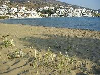Het dorp Batsi op Andros