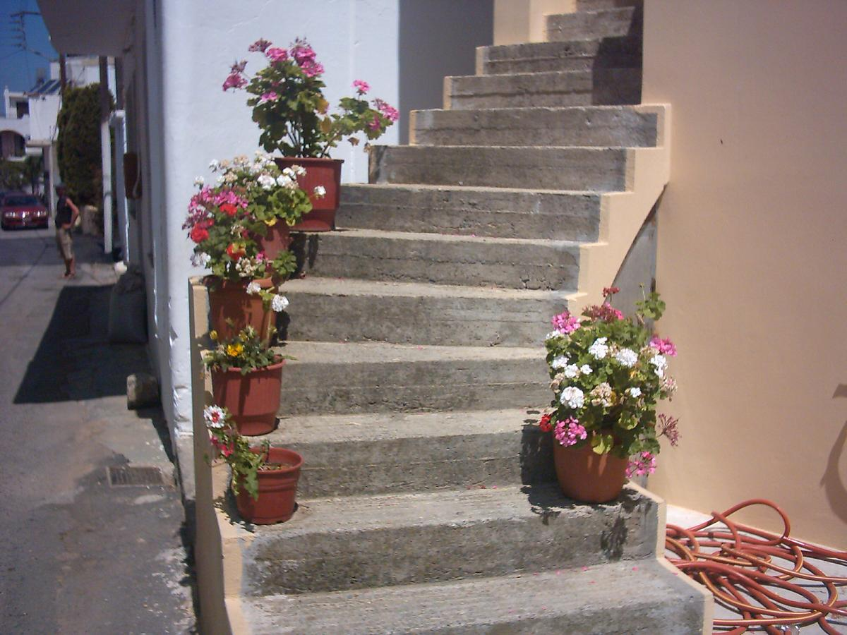 Een trap met bloempotten in Kasteli.
