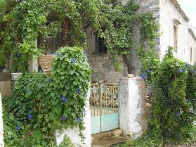 Kefalas, Apokoronas, Crete