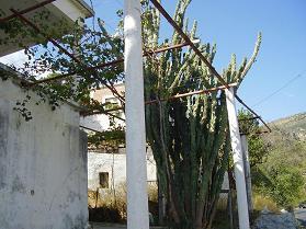 Moni, Sougia, Kreta, Crete
