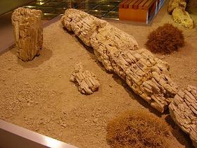 Museum Lesbos