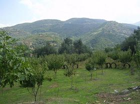 Nea Roumata, Kreta.