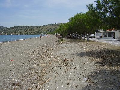 Nyfida Lesbos