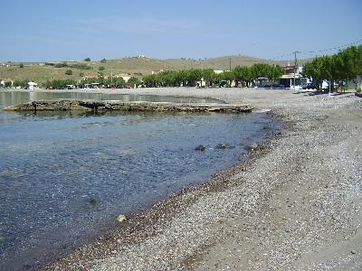 Tavari Lesbos