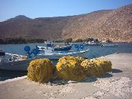 Fishermens nets at Panormos