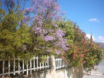 Tylissos, Crete, Kreta