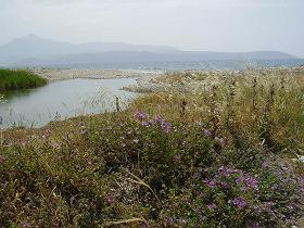 Samos, Mesokambos or Messokampos Beach