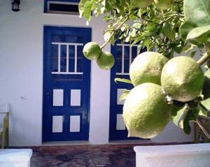 Villa Maria Vekri, Koufonissia