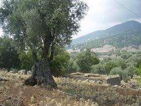 Aradena Kloof, Kreta, Aradena Gorge, Crete