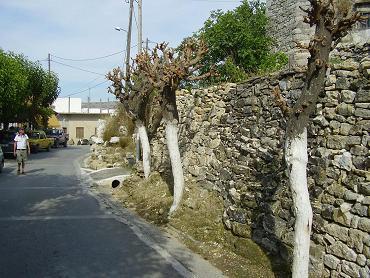 Kufi, Argiroupoli, Crete, Kreta.
