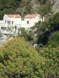 Ravdoucha Beach studios, Crete, Kreta