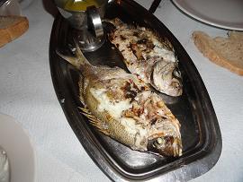 Akrogialos Fish Taverna, Korfalonas beach, Kissamos, Crete, Kreta