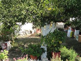 Modi, Crete, Kreta