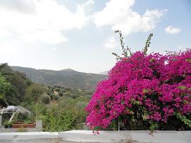Agios Spyridon, Crete, Kreta