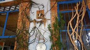 Afrata, Taverna Kali Kardia, Crete, Kreta.