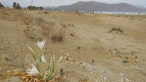 Georgioupoli, Kreta, Crete