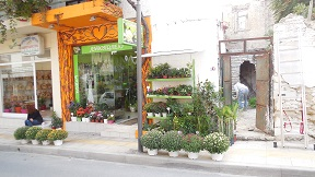 Peza, Kreta, Crete