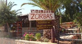 Zorbas Rooms in Lakkoi Skaloti