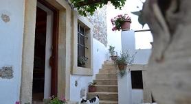 Villa Pachias, Pefki, Pefkoi, Crete, Kreta.