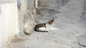 Meseleri, Crete, Kreta
