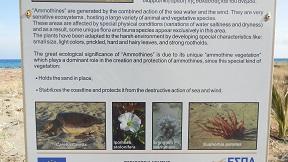 Xerokampos Alatsolimni wetlands, Crete, Kreta