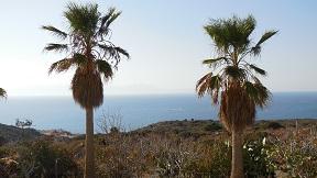 Lemon Tree Villas, Crete, Kreta