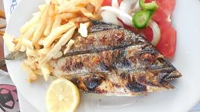 Gorgona Restaurant - Naxos Agia Anna