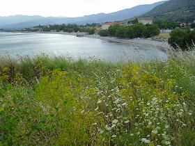 Samos, Potokaki Beach bij Pythagorion