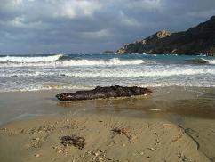 Serifos, Psili Amos Beach