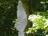 limestone_wing6.jpg