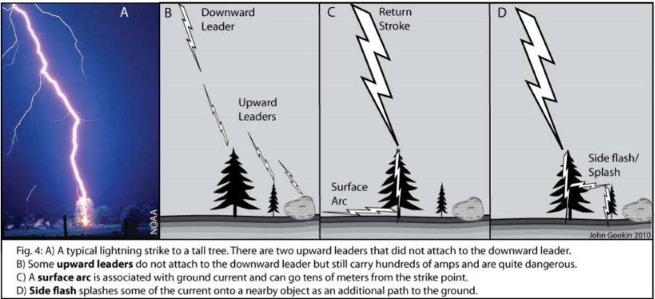 Lightning Behavior And Safety